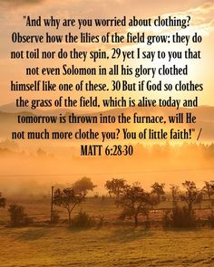 Matthew 6:28-30