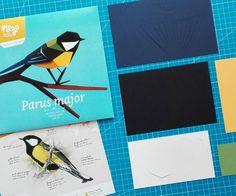 www.plego.cat DIY paper figure. - PARUS MAJOR - MALLERENGA CARBONERA - CARBONERO COMÚN - GREAT TIT -