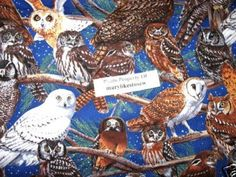 Owls Sewing Fabric by the yard looks like Hedwig in Harry Potter movies
