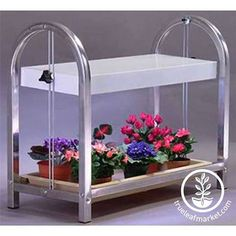 Indoor plant stand with fluorescent lighting. Excellent for African Violets, herbs, lettuce, starting seedlings. Indoor Gardening Supplies, Whatsoever Things Are Lovely, Growing Microgreens, Sprouting Seeds, Growing Plants Indoors, Grow Kit, Organic Soil, Aluminum Table, Wheat Grass