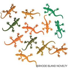 "3"" RAIN FOREST LIZARDS"
