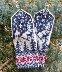 Ravelry: KathyInIowa's mystery mitts Fingerless Mittens, Knit Mittens, Knitted Gloves, Double Knitting Patterns, Crochet Patterns, Mittens Pattern, Wrist Warmers, Knitting Projects, Knits