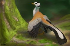 Archaeopteryx by PixelMecha on deviantART