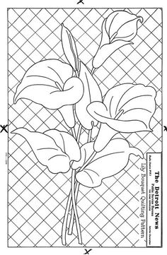 Lily line drawing quilt pattern at The Quilt Index Stained Glass Quilt, Stained Glass Flowers, Stained Glass Designs, Stained Glass Patterns, Applique Patterns, Quilt Patterns, Quilting Designs, Embroidery Designs, Parchment Cards