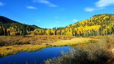 Link in bio#thatchillaxdude I'll be the first one to admit that I forget how beautiful Colorado is.  #followyourarrow #travel  #wandern #travelbug #travelgram #wanderlust #notallwhowanderarelost #instalike #instatravel #instatraveling #photography #holiday #tourism #followme #travelblogger #passportready #worldtravel #natgeo #wander #autumn #leaves #camping #sunset #colorado