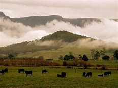 Image result for Tasmania Landscape