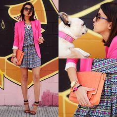 Pink Blazer, French Bulldog!