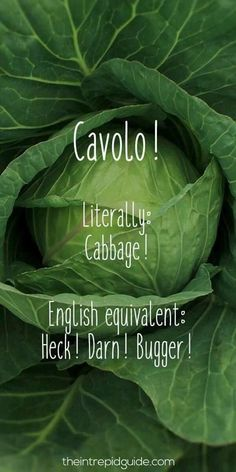 Learning Italian Language ~ cavolo