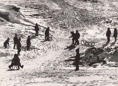 Martin Martinček: V zime na záhumní:1960 - 1980