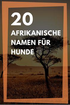 Afrikanische namen mit c männlich