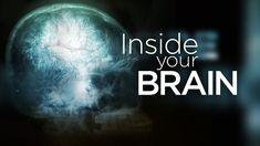 Top brain scientist is 'philosopher at heart' - CNN.com