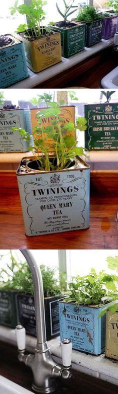 Use Old Tea Caddies