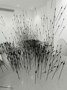 Ryan Gander 2010, Arrows | Ryan Gander's complex and unfettered conceptual practice is stimulated by queries, investigations or what-ifs, rather than strict rules or limits.