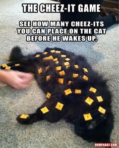 This would either go really well or really terribly with Wynnie hahahaha @Domi Mills