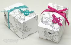 Stampin' Up! Demonstrator Pootles – Sale a Bration Free Inside the Lines Paper Box Click it for a 360° View, Pin it for later! I do love free. Free time, free cosmetics, free products. …