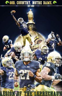 Nd Football, Notre Dame Football, Football Jerseys, College Football, Football Helmets, Notre Dame Irish, Go Irish, Michigan State Spartans, Fighting Irish