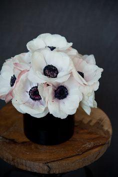 Northern Light: Sunday Flowers >> I LOVE white poppies!