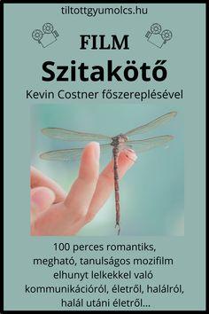 Danielle Steel, Kevin Costner, Movie Nights, Film, Spirit, Movies, Movie Posters, Movie, Film Stock