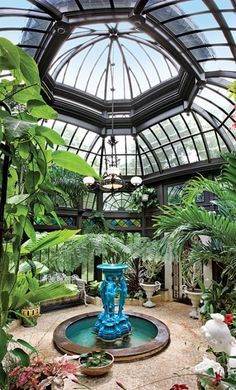 This is why conservatories were invented!