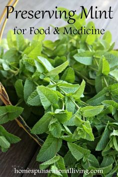 House Plant Maintenance Tips Mint Tends To Be Abundant If Not Downright Invasive Thankfully It Has A Multitude Healing And Tasty Uses. Capitalize on It By Preserving Mint For Food And Medicine With These Easy Ideas. Healing Herbs, Medicinal Plants, Natural Healing, Culture D'herbes, Diy Herb Garden, Herbs Garden, Garden Ideas, Fruit Garden, Types Of Herbs