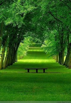 Oh I Want Go Here Summer Park Chamarande France Photo Via SonyaHeythat Reminds Me Of What Dreams May Comethe DD