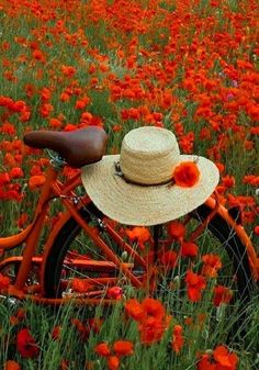 Bicycle in a field of poppies ♥ Wild Flowers, Beautiful Flowers, Bouquet Flowers, Plant Aesthetic, Bicycle Art, Nature Pictures, Beautiful Pictures, My Flower, Belle Photo