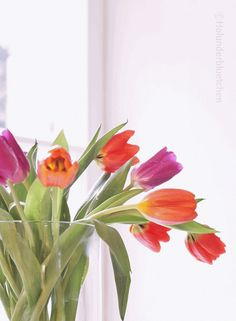 Holunderbluetchen: Pin it . Bed And Breakfast, Box, Tulips, Spring, Desserts, Plants, Inspiration, Flowers, Ideas