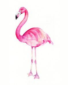 Pink Flamingo Watercolor Print 8 x 10 by Marysflowergarden on Etsy, $12.00