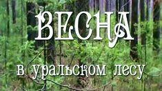 Весна в уральском лесу!! Уральская природа!