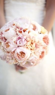 very large & soft blush bouquet, peonies