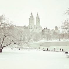 NYC. Central Park , The Lake