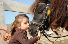 Vous possédez ou avez possédé un animal de compagnie ? Vous êtes alors au courant de la liaison qui se développe entre les humains et les animaux. Ce lien est parfaitement naturel q...