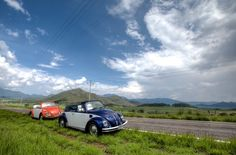 Crossing the Sierra Madre © The Traveling Beetle / Graham Mattock Vw Beetle Convertible, Group Tours, Vw Beetles, Mexico City, Art And Architecture, Traveling By Yourself, Graham, City, Vw Bugs