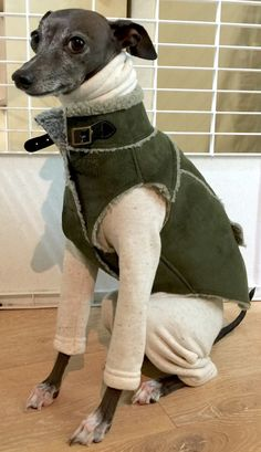 italiangreyhound cloths- khaki feux suede vest (DO NOT COPY!!!) model name—roo
