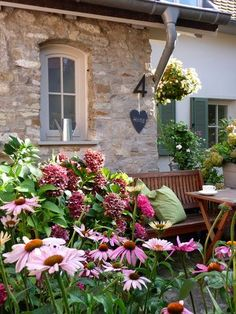 Precious Tips for Outdoor Gardens In general, almost half of the houses in the world… Summer Flowers, Colorful Flowers, Beautiful Flowers, Hydrangea Garden, Hydrangea Flower, Garden Care, Farm Gardens, Outdoor Gardens, Le Hangar
