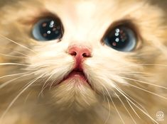 Cute cat study, Catherine Steuer on ArtStation at https://www.artstation.com/artwork/cute-cat-study