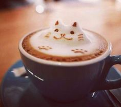 Cats and Coffee- it doesn't get much better.