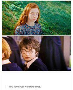 HP sarcasm