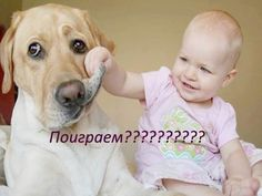 Super funny texts for kids friends ideas Funny Animal Faces, Funny Dog Faces, Funny Animals, Funny Comics For Kids, Funny Kids, Funny Babies Laughing, Dog Quotes Love, Funny Quotes, Funny Humor
