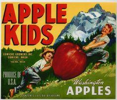 APPLE KIDS Vintage Apple Crate Label