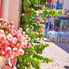 #alacati #cesme  by bihterelis Alacati Turkey, Fruit, Plants, Instagram, Plant, Planets