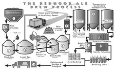 Beer Brewing, Home Brewing, Beer Making Process, Malted Barley, How To Make Beer, Brewery, Investigations, Bamboo, Relationships