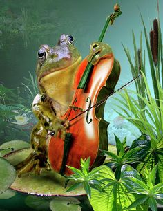 Humorous Scene Frog Playing Cello In Lily Pond Painting Gina Femrite