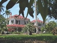A Banyan Tree – and Thomas Edison's Legacy – Grow in Fort Myers| VisitFlorida.com