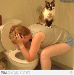lmao. Cats I swear..........