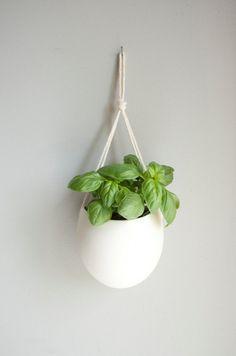 Et si on suspendait les pots de fleurs au mur? Gain de place, déco et utile, pas mal... | Mon Bio Cocon