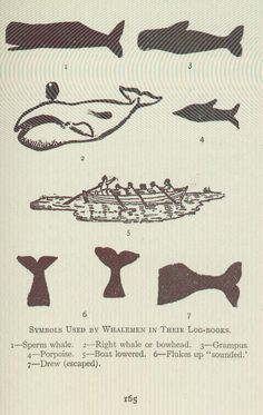 Symbols Used by Whalemen in Their Log-Books.1-Sperm whale.2-Right whale or bowhead.3-Grampus4-Porpoise.5-Boat lowered.6-Flukes up 'sounded.'7-Drew (escaped)