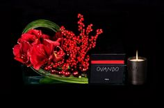 Our exclusive #holiday gift set is now available online! Experience the warmth, comfort and beauty of Ovando's luxury #Pisca candle and holiday arrangement.