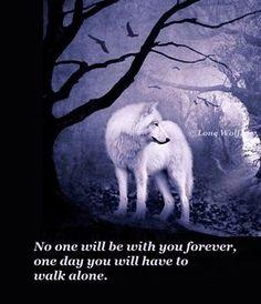 Petra Schmidt Shared Lone Wolf Photo