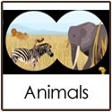 "Welcome to Confessions of a Homeschooler Animal printables. Click on any of the items below to download. If the document is not opening in your browser, right click on the link and select ""Save Link As"". Pick a spot on your hard drive to save it to and click ""ok"". Expedition Earth: Discovering God's Animals…Read More"